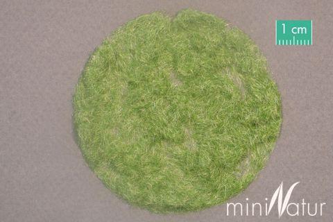 miniNatur Grass flock 2mm - Early fall - 50g - H0 (1:87) - (002-23)
