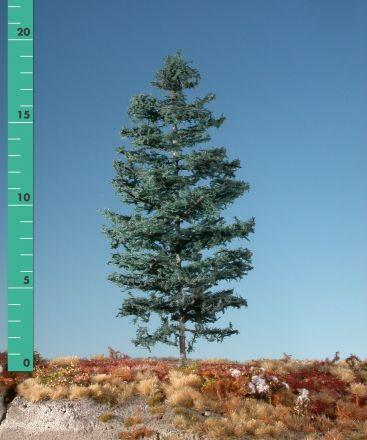 Silhouette Nordic fir - Summer - 1 (ca. 10-13cm) - N-Z (1:160-220) - (176-12)