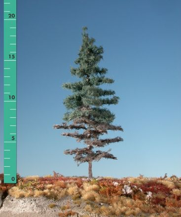 Silhouette Weathered Nordic fir - Summer - 1 (ca. 10-13cm) - N-Z (1:160-220) - (176-16)