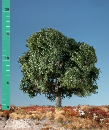 Silhouette Oak - Summer - 0 (< ca. 8cm) - N-Z (1:160-220) - (180-02)