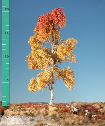 Silhouette Aspen - Late fall - 1 (ca. 10-13cm) - H0 (1:87) - (215-14)