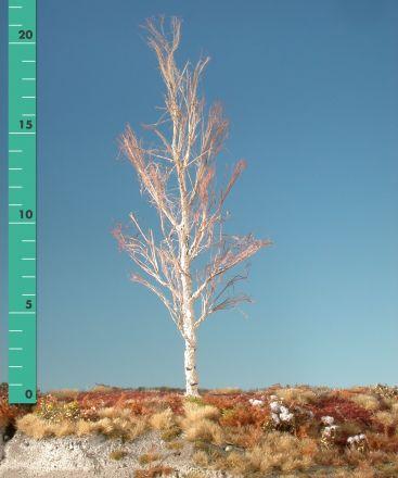 Silhouette Aspen - Barren - 2 (ca. 15-20cm) - H0 (1:87) - (215-20)