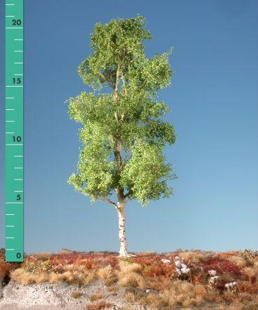 Silhouette Aspen - Spring - 2 (ca. 15-20cm) - H0 (1:87) - (215-21)