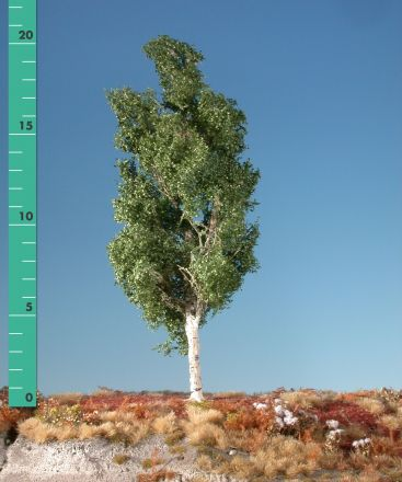 Silhouette Aspen - Summer - 2 (ca. 15-20cm) - H0 (1:87) - (215-22)