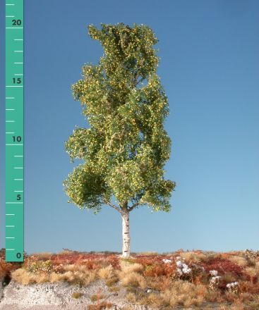 Silhouette Aspen - Early fall - 2 (ca. 15-20cm) - H0 (1:87) - (215-23)