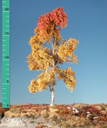 Silhouette Aspen - Late fall - 2 (ca. 15-20cm) - H0 (1:87) - (215-24)