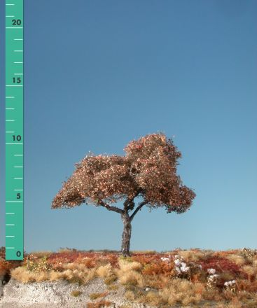 Silhouette Appletree - Late fall - 1 (ca. 10-13cm) - H0 (1:87) - (226-14)