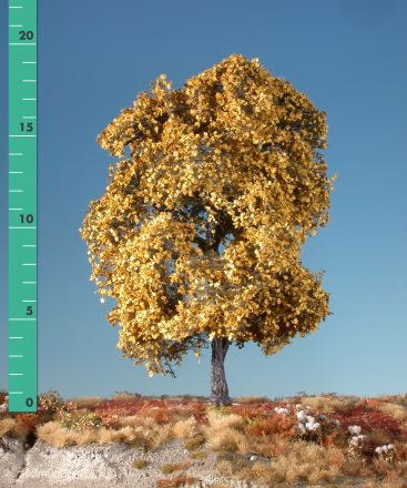 Silhouette Maple - Late fall (yellow) - 3 (ca. 22-29cm) - H0 (1:87) - (230-34)
