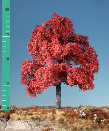 Silhouette Maple - Late fall (red) - 3 (ca. 22-29cm) - H0 (1:87) - (230-35)