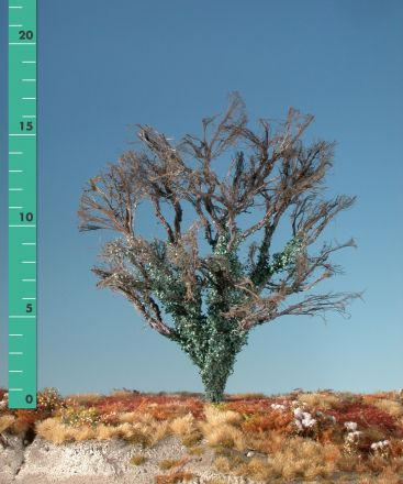 Silhouette Maple overgrown with ivy - Barren - 2 (ca. 15-20cm) - H0 (1:87) - (231-20)