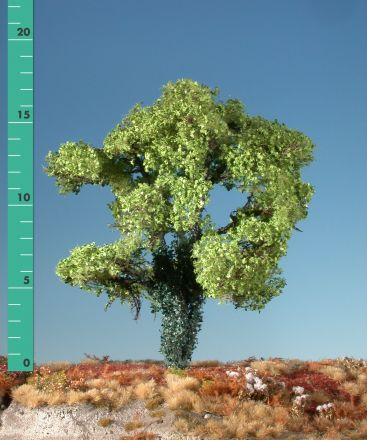 Silhouette Maple overgrown with ivy - Spring - 2 (ca. 15-20cm) - H0 (1:87) - (231-21)