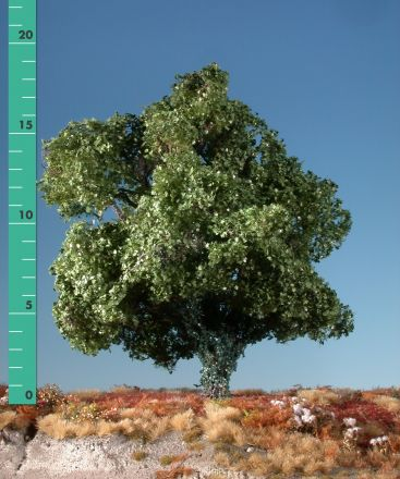 Silhouette Maple overgrown with ivy - Summer - 2 (ca. 15-20cm) - H0 (1:87) - (231-22)