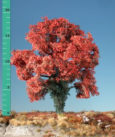 Silhouette Maple overgrown with ivy - Late fall (red) - 2 (ca. 15-20cm) - H0 (1:87) - (231-25)