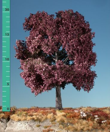 Silhouette Red maple - Summer - 2 (ca. 15-20cm) - H0 (1:87) - (232-22)