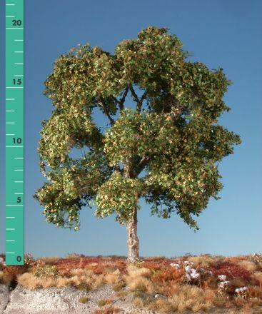 Silhouette Plane tree - Early fall - 1 (ca. 10-13cm) - H0 (1:87) - (233-13)