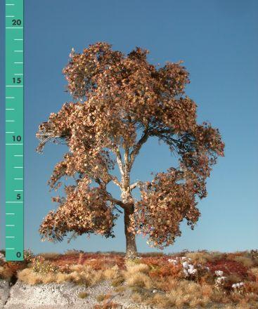 Silhouette Plane tree - Late fall - 1 (ca. 10-13cm) - H0 (1:87) - (233-14)