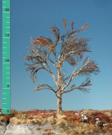 Silhouette Plane tree - Barren - 2 (ca. 15-20cm) - H0 (1:87) - (233-20)