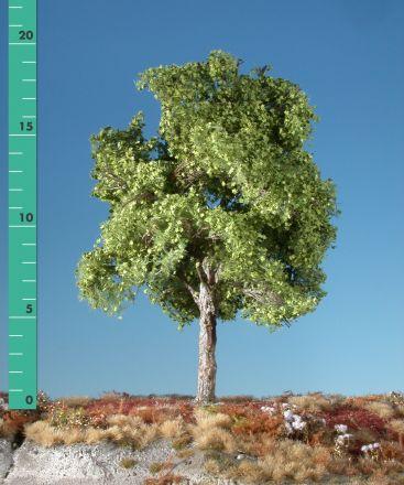 Silhouette Plane tree - Spring - 2 (ca. 15-20cm) - H0 (1:87) - (233-21)