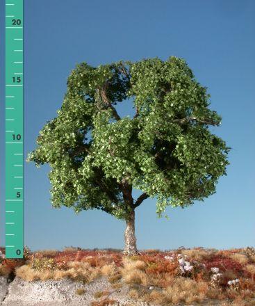 Silhouette Plane tree - Summer - 2 (ca. 15-20cm) - H0 (1:87) - (233-22)