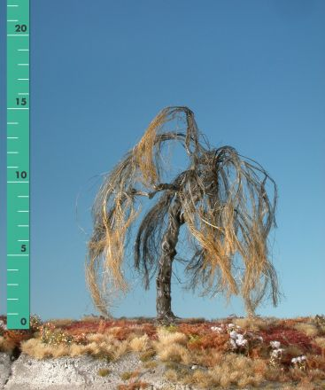 Silhouette Weeping willow - Barren - 1 (ca. 10-13cm) - H0 (1:87) - (240-10)