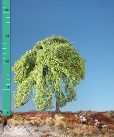Silhouette Weeping willow - Spring - 2 (ca. 15-20cm) - H0 (1:87) - (240-21)