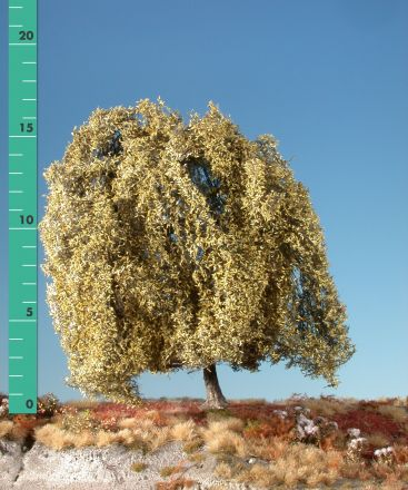 Silhouette Weeping willow - Late fall - 2 (ca. 15-20cm) - H0 (1:87) - (240-24)