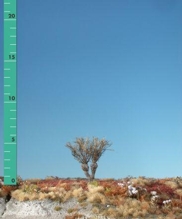 Silhouette Willow stump - Barren - 0 (< ca. 8cm) - H0 (1:87) - (241-00)