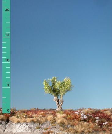 Silhouette Willow stump - Spring - 0 (< ca. 8cm) - H0 (1:87) - (241-01)