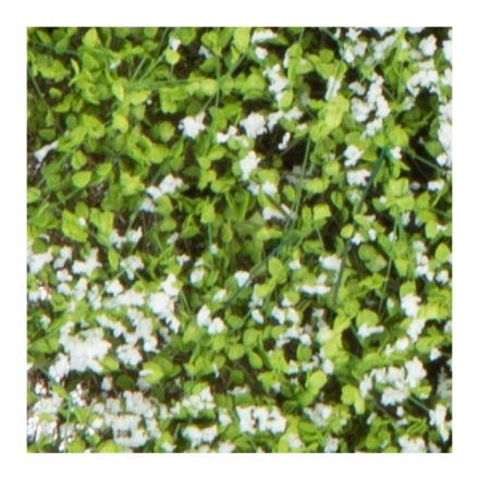Silhouette shrubbery - blooming white - 12 x 14 cm - (250-45)