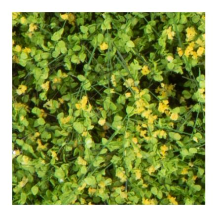 Silhouette shrubbery - blooming yellow - 12 x 14 cm - (250-46)