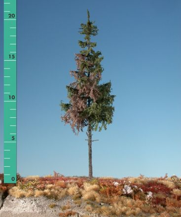 Silhouette Weathered green spruce high trunk - Summer - 3 (ca. 22-29cm) - H0 (1:87) - (274-36)
