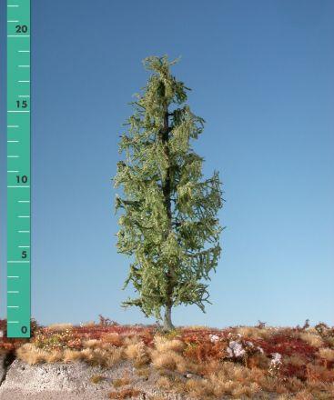 Silhouette Larch - Summer - 3 (ca. 22-29cm) - H0 (1:87) - (279-32)