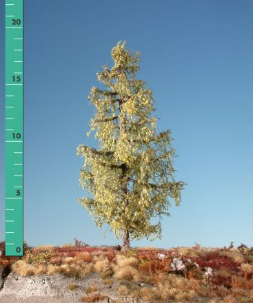 Silhouette Larch - Early fall - 3 (ca. 22-29cm) - H0 (1:87) - (279-33)
