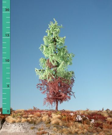 Silhouette Weathered larch - Spring - 3 (ca. 22-29cm) - H0 (1:87) - (279-35)