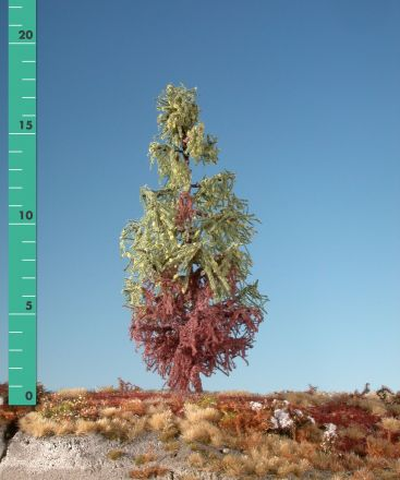 Silhouette Weathered larch - Early fall - 3 (ca. 22-29cm) - H0 (1:87) - (279-37)