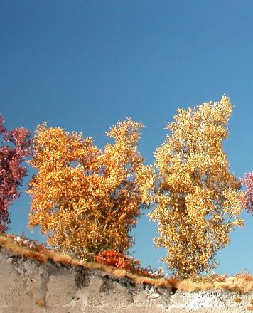 Silhouette Filigree bushes - Late fall - 0-1 (1:45+) - (300-24)