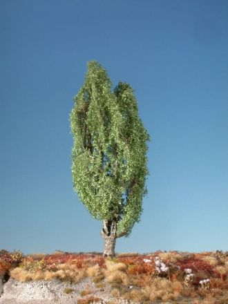 Silhouette Lombardy poplar - Summer - ca. 45cm - 0-1 (1:45+) - (313-42)