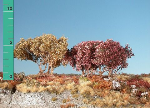 Silhouette Low shrubs - Late fall - ca. 8cm - 0-1 (1:45+) - (350-04)