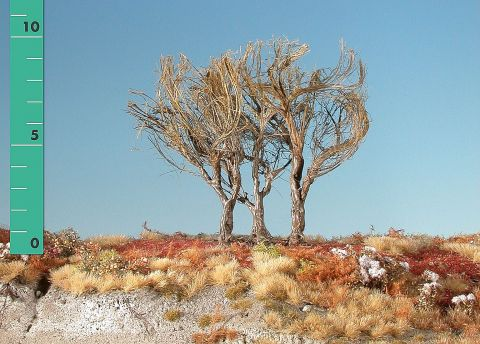 Silhouette High shrubs - Barren - ca. 19cm - 0-1 (1:45+) - (350-20)