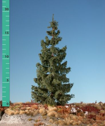 Silhouette Green spruce - Summer - ca. 42cm - 0-1 (1:45+) - (373-42)