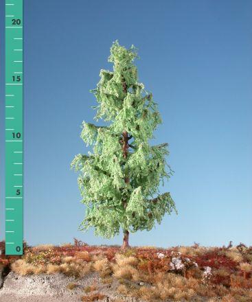 Silhouette Larch - Spring - ca. 39cm - 0-1 (1:45+) - (379-41)