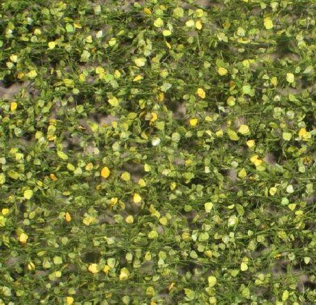 Silhouette Birch foliage - Early fall - ca. 15x4cm - 0-1 (1:45+) - (910-33S)