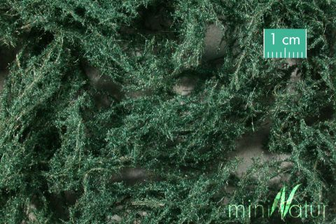miniNatur Ground-cover plant - Evergreen dark - ca. 15x4cm - H0 (1:87) - (996-22S)